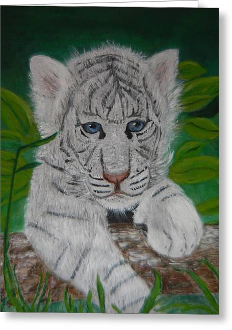 White Tiger Cub Greeting Card