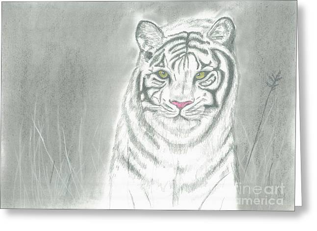 White Tiger Greeting Card by David Jackson