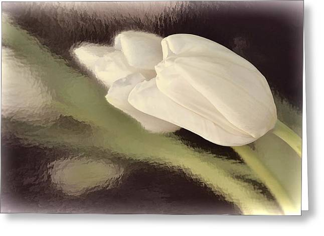 White Tulip Reflected In Misty Water Greeting Card