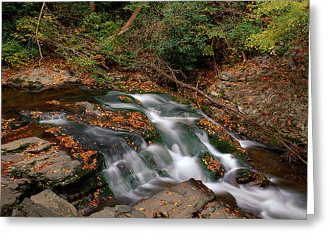 White Water The Great Smoky Mountains Greeting Card by Panoramic Images