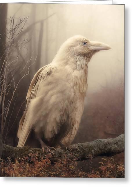 White Wild Raven Greeting Card by Cindy Grundsten