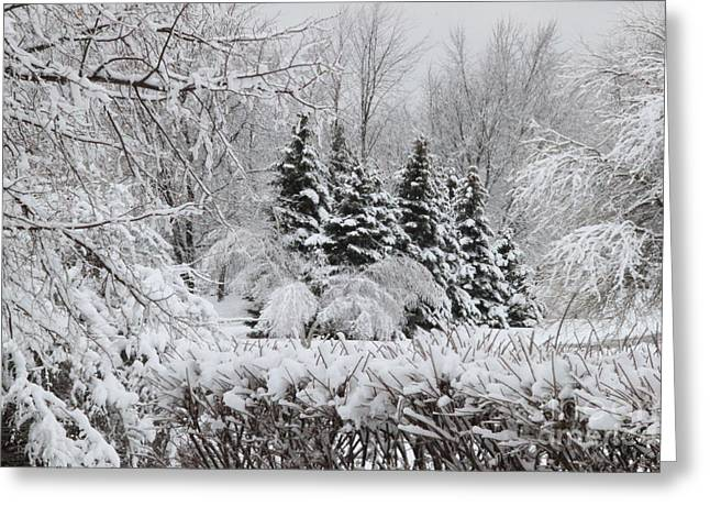 White Winter Day Greeting Card
