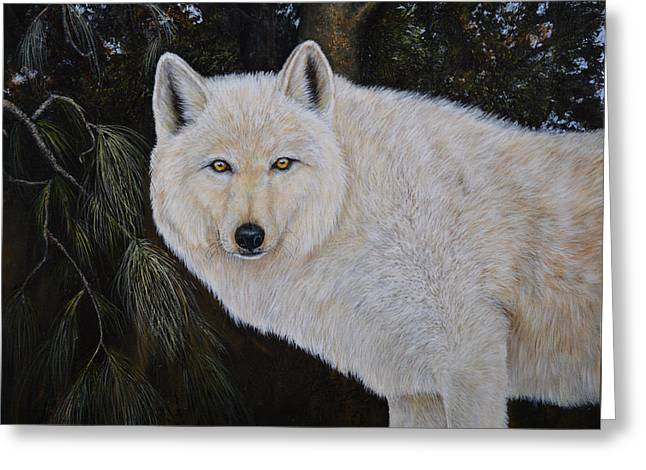 White Wolf In The Woods Greeting Card