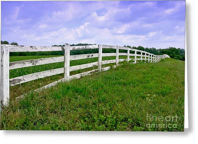 White Wood Fence Greeting Card by Olivier Le Queinec