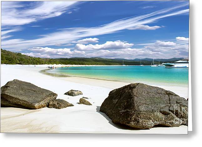 Whitehaven Beach Greeting Card by Shannon Rogers