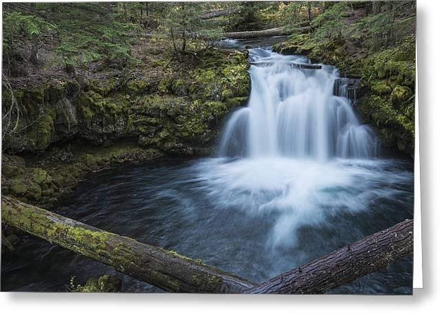 Whitehorse Falls Evening Greeting Card by Loree Johnson