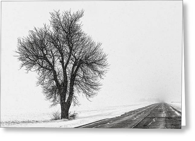 Whiteout Greeting Card by Chris Austin