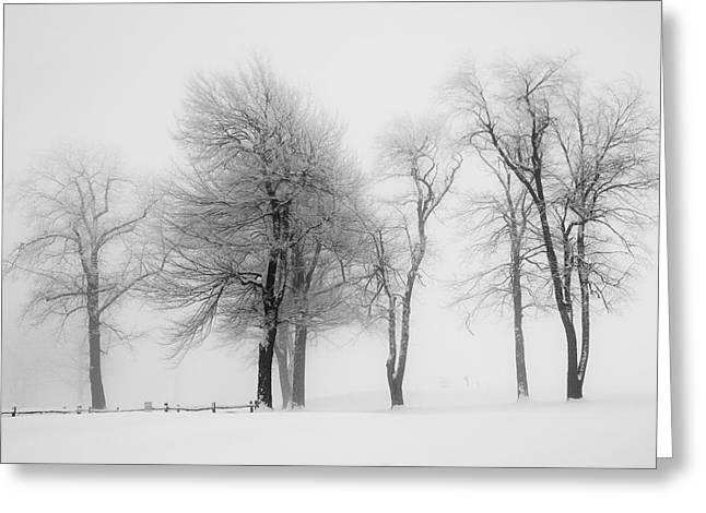 Whiteout Greeting Card by Emmanuel Panagiotakis