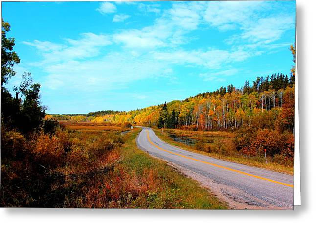 Greeting Card featuring the photograph Whiteshell Provincial Park by Larry Trupp
