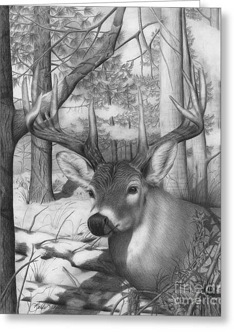 Whitetail Phantom Greeting Card