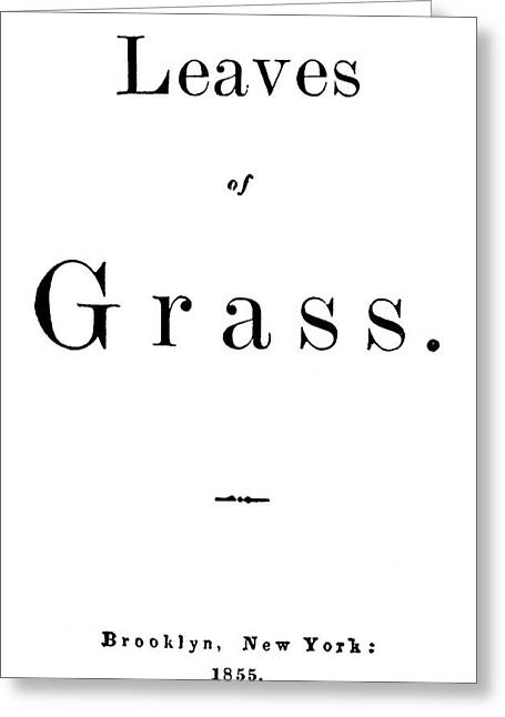 Whitman Leaves Of Grass Greeting Card by Granger