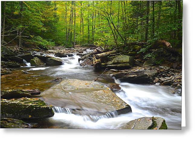 Whoosh Greeting Card by Frozen in Time Fine Art Photography