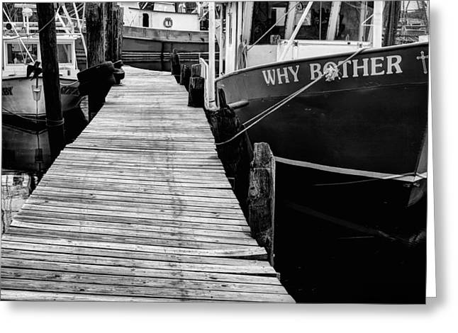 Why Bother Greeting Card by JC Findley