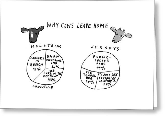 Why Cows Leave Home Greeting Card