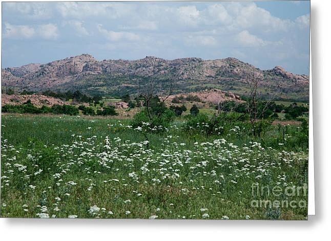 Wichita Mountains In Spring Greeting Card by Iris Greenwell