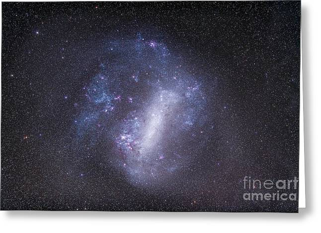 Widefield View Of The Large Magellanic Greeting Card by Alan Dyer