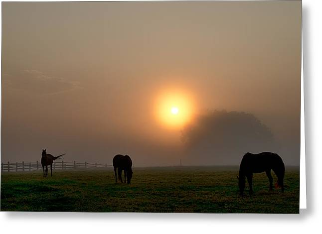 Widner Farm At Sunrise Greeting Card by Bill Cannon