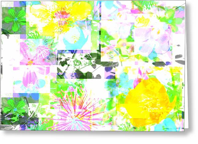 Wild About Flowers Greeting Card by Barbara Moignard