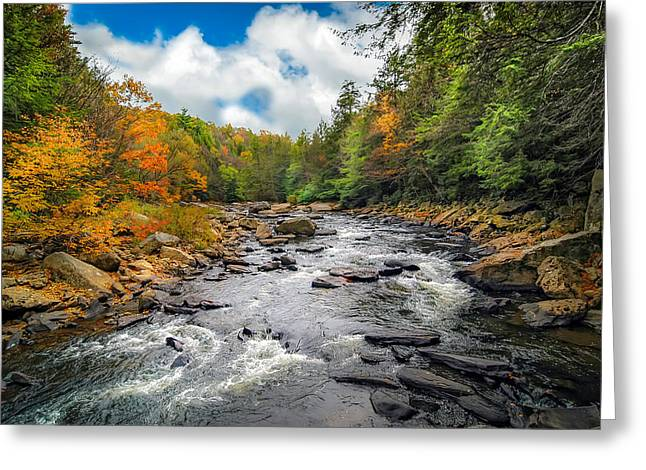 Wild Appalachian River Greeting Card