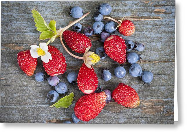 Wild Berries Greeting Card by Elena Elisseeva