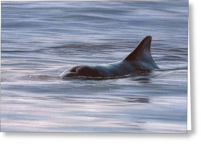 Wild Bottlenose Dolphin Painting - In Support Of The Sea Shepherd Conservation Society Greeting Card