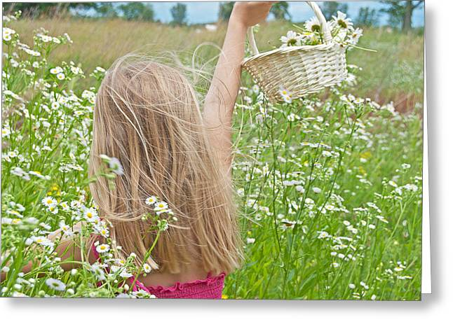 Wild Daisy Field Greeting Card by Maria Dryfhout