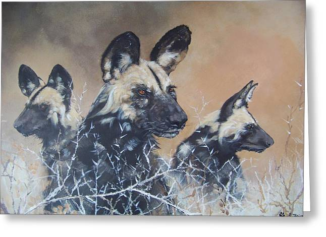 Wild Dog Trio Greeting Card by Robert Teeling