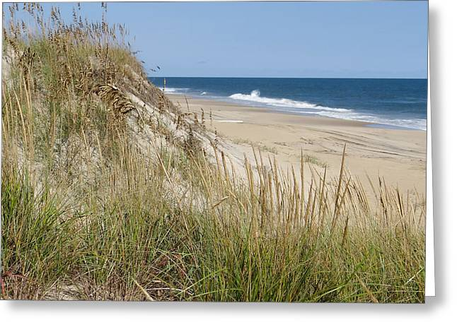 Wild Dune Greeting Card by David Nichols