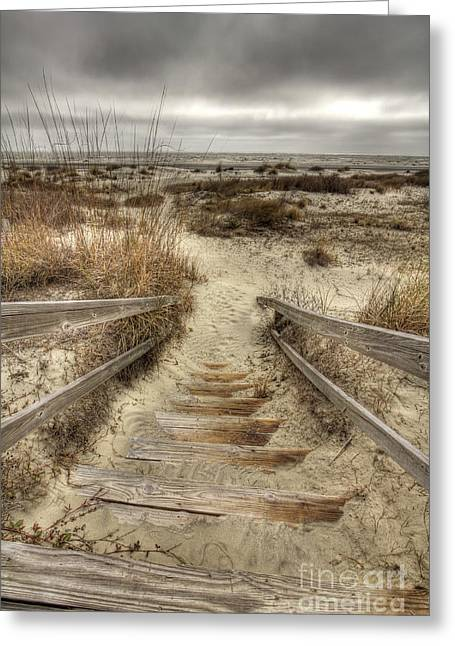 Wild Dunes Beach South Carolina Greeting Card by Dustin K Ryan