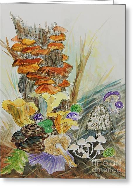 Wild Edible Mushrooms Greeting Card