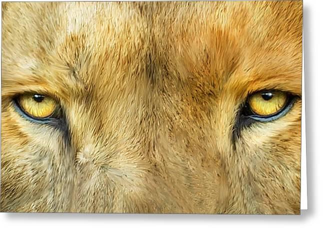 Wild Eyes - Lion Greeting Card by Carol Cavalaris