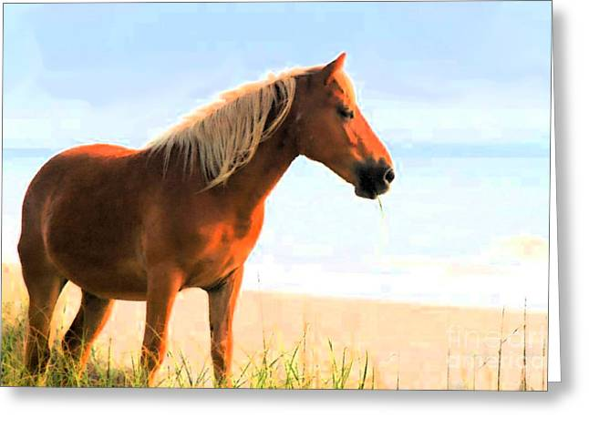 Wild Horses Can't Tear Me Away Greeting Card