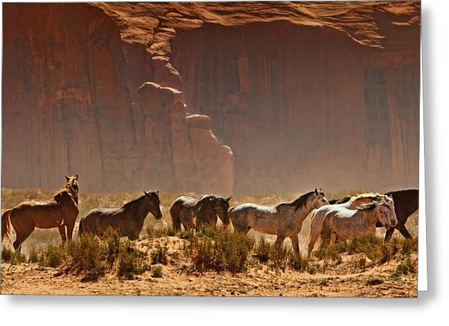 Wild Horses In The Desert Greeting Card
