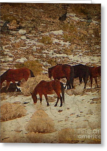 Wild Horses In The Hills Greeting Card by Bobbee Rickard