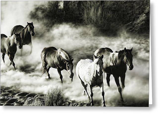 Wild Hosses Re Edited  Greeting Card