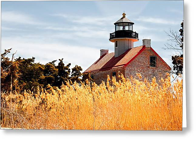 Wild Lighthouse Greeting Card