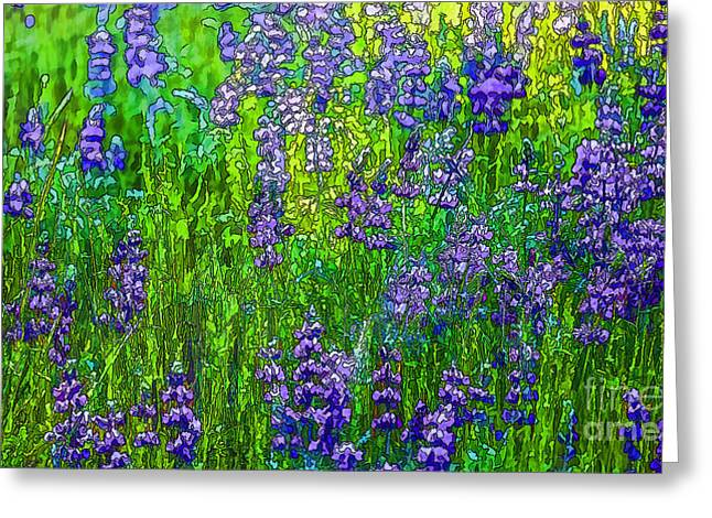 Wild Lupine Greeting Card by Nancy Marie Ricketts
