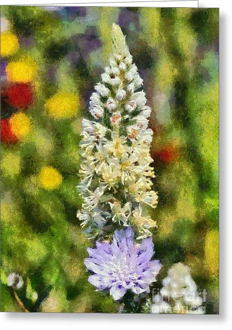 Wild Mignonette Greeting Card by George Atsametakis