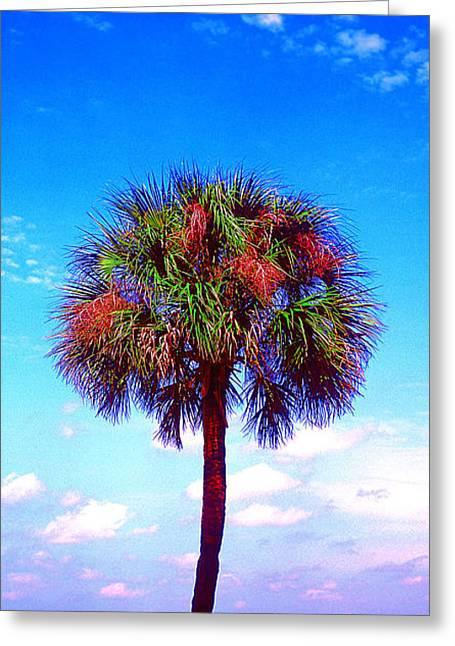 Wild Palm 1 Greeting Card