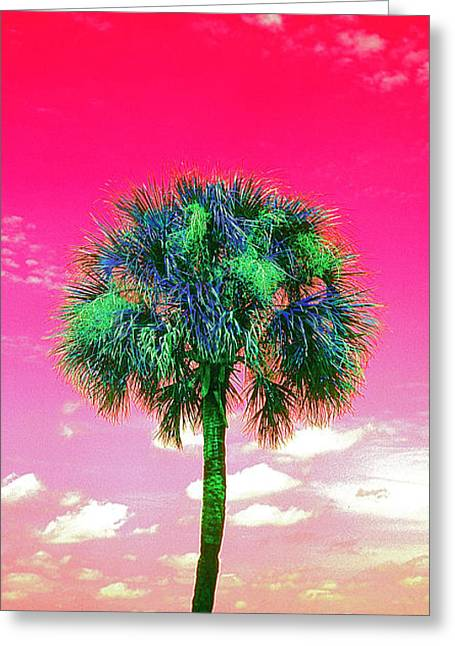 Wild Palm 2 Greeting Card