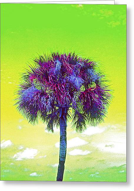 Wild Palm 3 Greeting Card