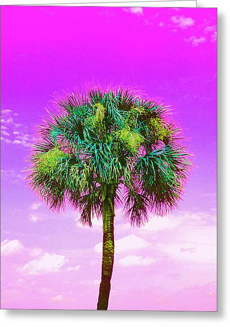 Wild Palm 4 Greeting Card