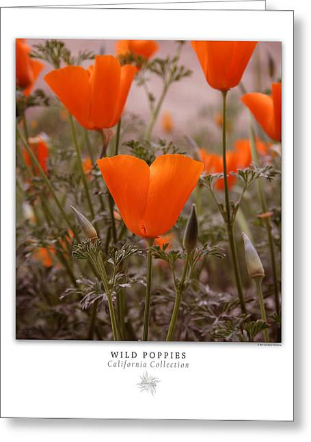 Wild Poppies Art Poster - California Collection  Greeting Card by Ben and Raisa Gertsberg
