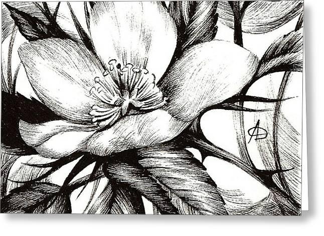 Wild Rose. Alberta Flood Rose Project Greeting Card by Anna  Duyunova