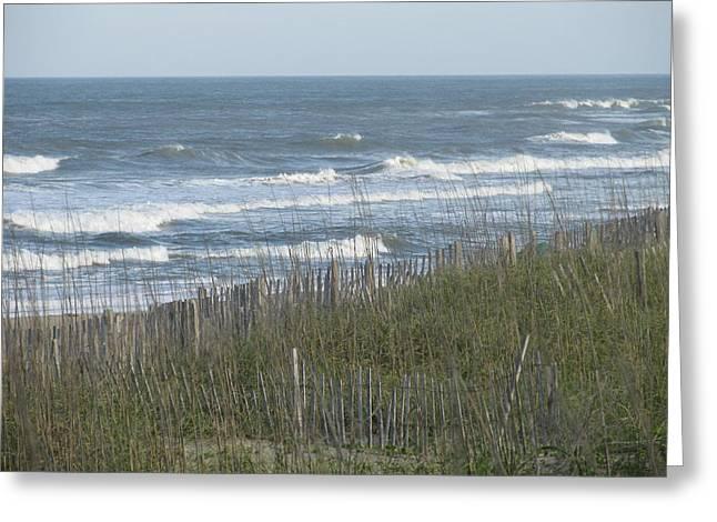 Wild Sea Greeting Card by Cheryl Smith