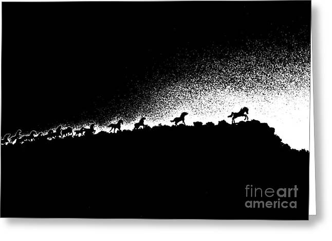 Wild Stallions Silhouette Greeting Card