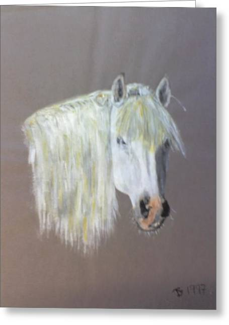 Wild Greeting Card by Stephen Thomson