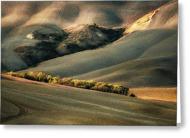 Wild Tuscany Greeting Card