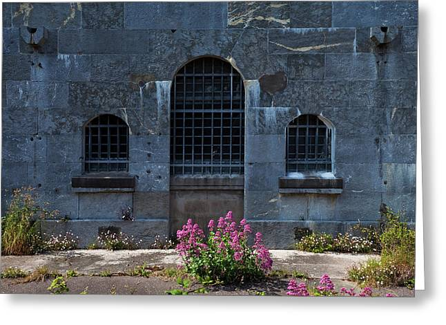 Wild Valerian Near Prison Walls In Fort Greeting Card by Panoramic Images