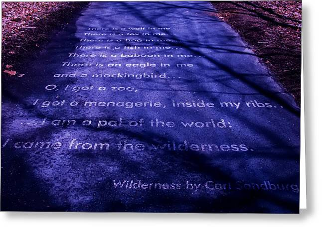 Wilderness - Carl Sandburg Greeting Card